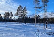 Vinter 14