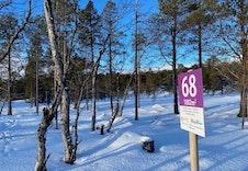Vinter 15