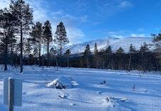 Vinter 16