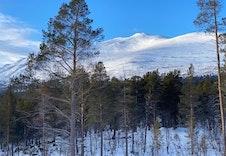 Vinter 9