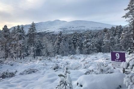 Stor tomt rett ved skiløype og 10 minutter unna alpinbakken. Under to timer kjøretur fra Trondheim