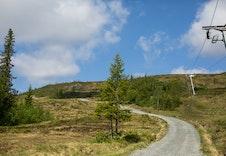 Det er mange sykkelveger i området. Se www.meraker-storlien.com