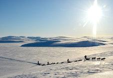 Muligheter for sledeturer over et snødekt landskap i vinterdrakt, se www.hyskyadventure.no