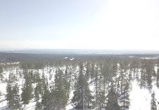 Dronefoto av tomteområdet