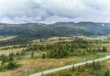 Tomtefeltet med utsikt mot Hardangervidda.