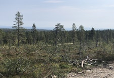 Fotballbanen med utsikt til Mjøsa