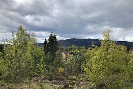 Eidsvoll/Langsetåsen: Byggeklar eneboligtomt i barnevennlig boligområde|sørvestvendt med gode solforhold