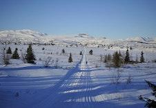 Utstrakt løypenett retning Hemsedal og fjellheimen i Ål fra Skagahøgdi