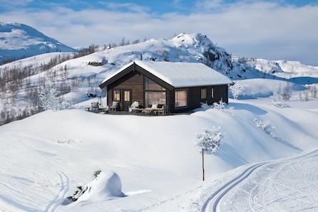 Praktisk/attraktiv familiehytte m/8 sengepl.. Sol og utsikt ved toppen av skisenteret på Gol, tett på alpint og langrenn