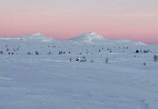 Skaget - Høyeste fjellet i Langsua Nasjonalpark