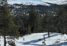 Skisporet sett fra tomt 95