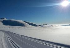 Flotte skiløyper i området