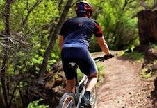 Sykkel I Skogen