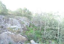 Utsikt mot sørøst - fra 10 m høyde