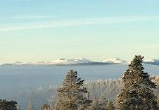 Utsikt fra Bjørnelabben