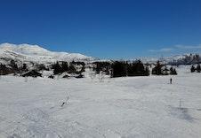 Utsikt fra tomten - Skispor bare 20 meter unna!