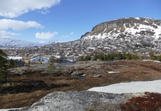 Bilde fra nærområdet