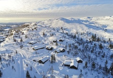 Dronefoto fra området