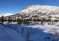 Nærområdet i vinterdrakt